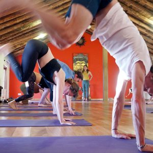 50 hr Yoga Anatomy and Alignment training Portugal