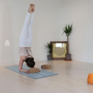 ZOOM ONLINE YOGA CLASSES